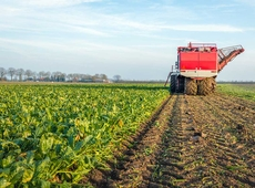 landbouw